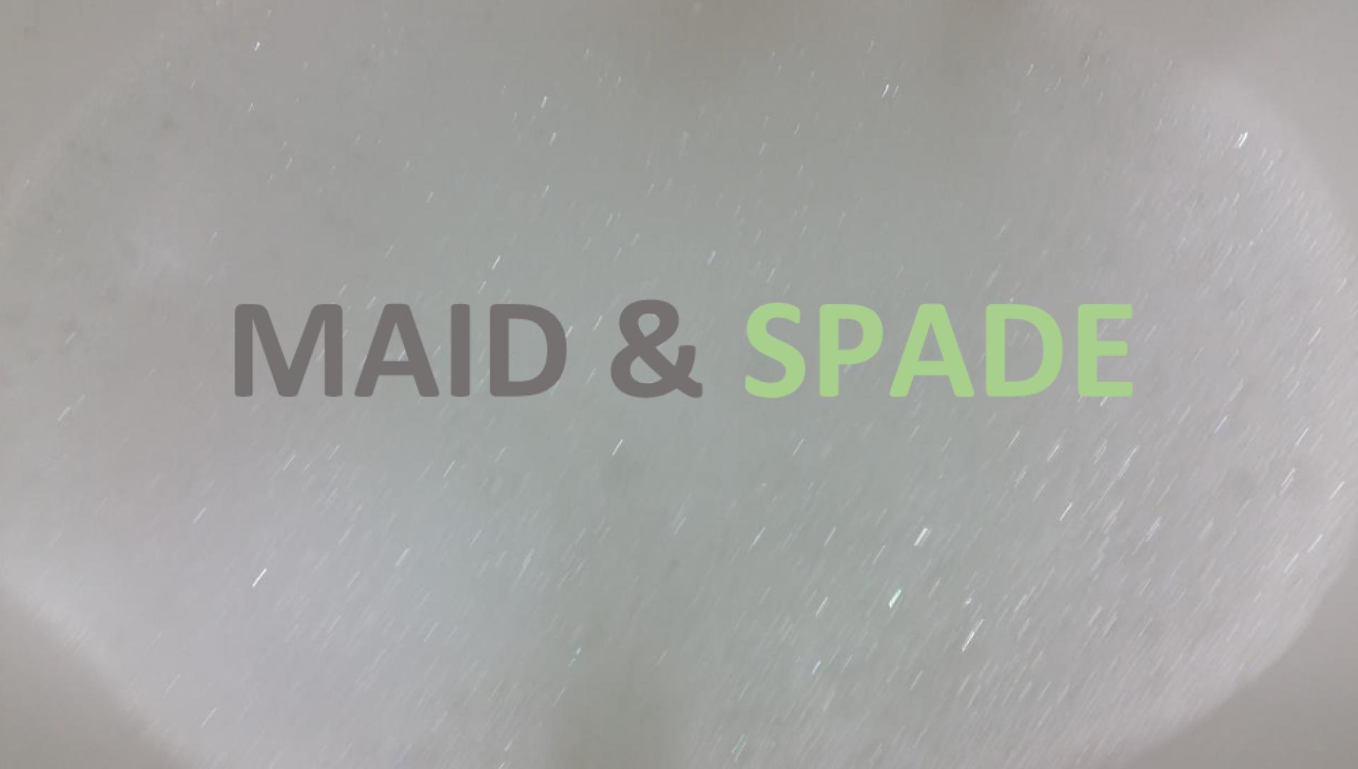 Maid & Spade Services